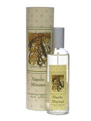 Provence & Nature Absolu Mimosa Provence & Nature для мужчин и женщин