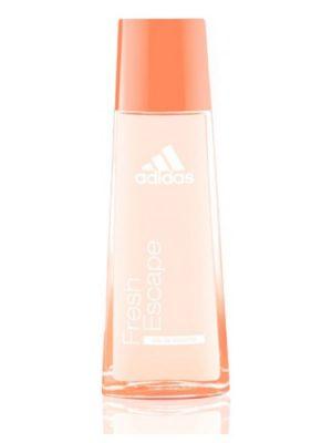 Adidas Adidas Fresh Escape Adidas для женщин