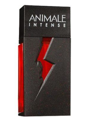 Animale Animale Intense Animale для женщин