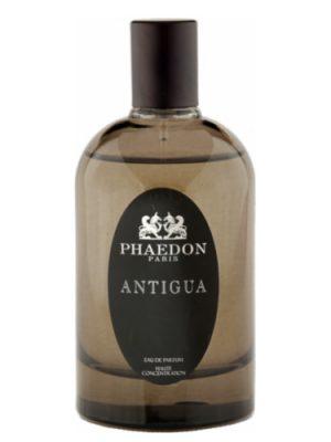Phaedon Antigua Phaedon для мужчин и женщин