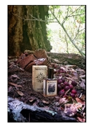 Solstice Scents Black Forest Solstice Scents для мужчин и женщин