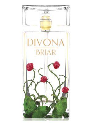 Divona Briar Divona для женщин