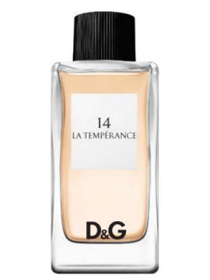 Dolce&Gabbana D&G Anthology La Temperance 14 Dolce&Gabbana для женщин