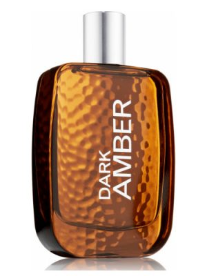 Bath and Body Works Dark Amber for Men Bath and Body Works для мужчин