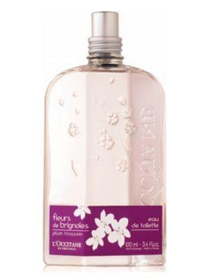 L'Occitane en Provence Fleurs de Brignoles (Plum Blossom) L'Occitane en Provence для женщин