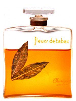 Cherigan Fleurs de Tabac Cherigan для женщин