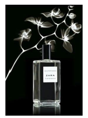 Zara Flor de Azahar Zara для женщин