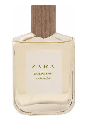 Zara Norrland Zara для мужчин