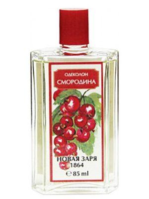 Novaya Zarya Smorodina Смородина Novaya Zarya для мужчин