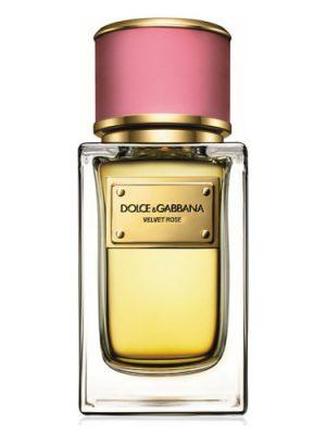 Dolce&Gabbana Velvet Rose Dolce&Gabbana для женщин