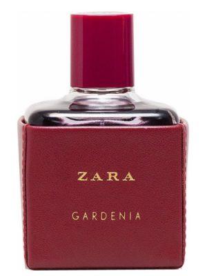 Zara Zara Gardenia 2016 Zara для женщин
