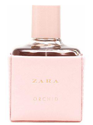 Zara Zara Orchid 2016 Zara для женщин