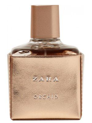 Zara Zara Orchid 2017 Zara для женщин